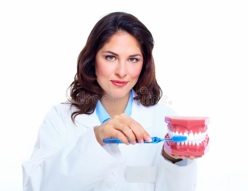 牙医妇女。 库存图片