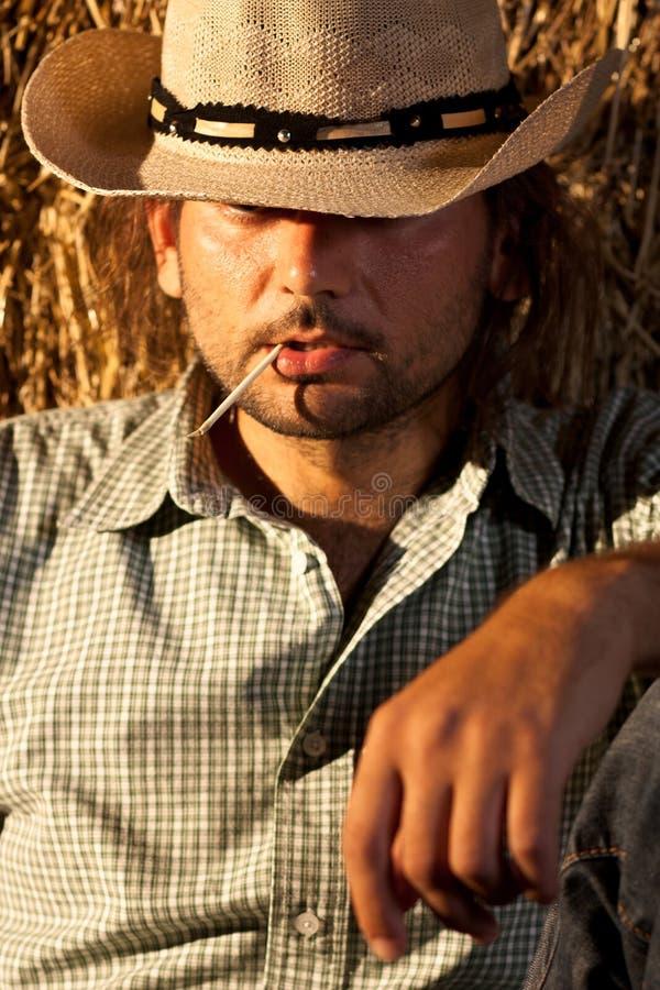 牛仔他的嘴秸杆 库存照片