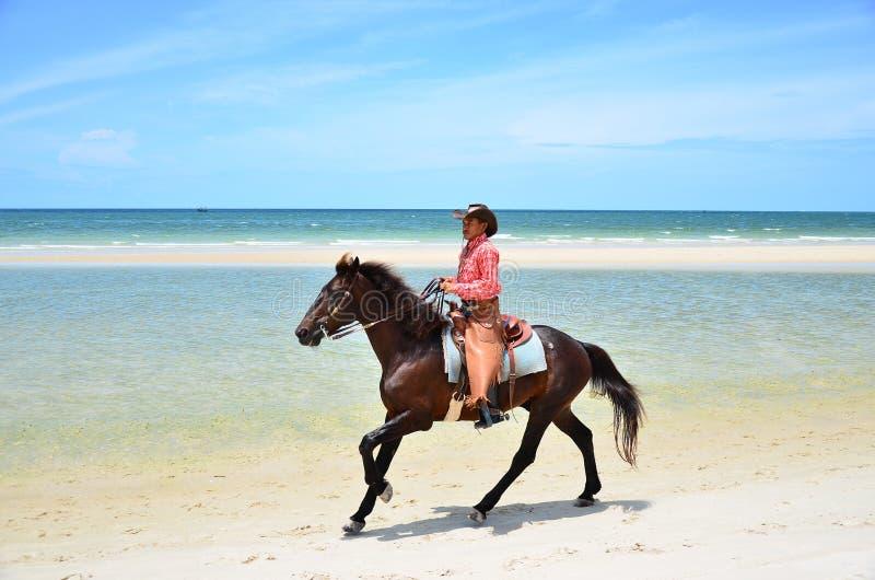 牛仔是在海滩和天空蔚蓝背景的骑乘马步行 v 免版税库存图片
