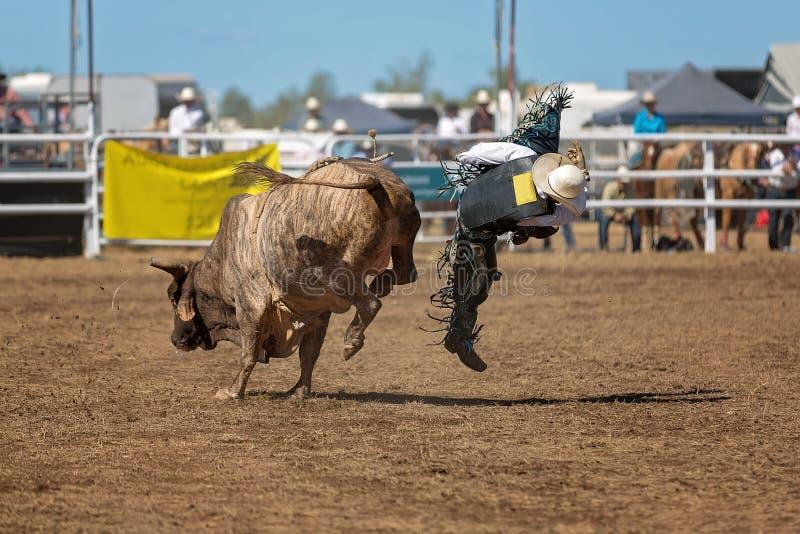 牛仔跌下公牛在圈地竞争时 免版税图库摄影