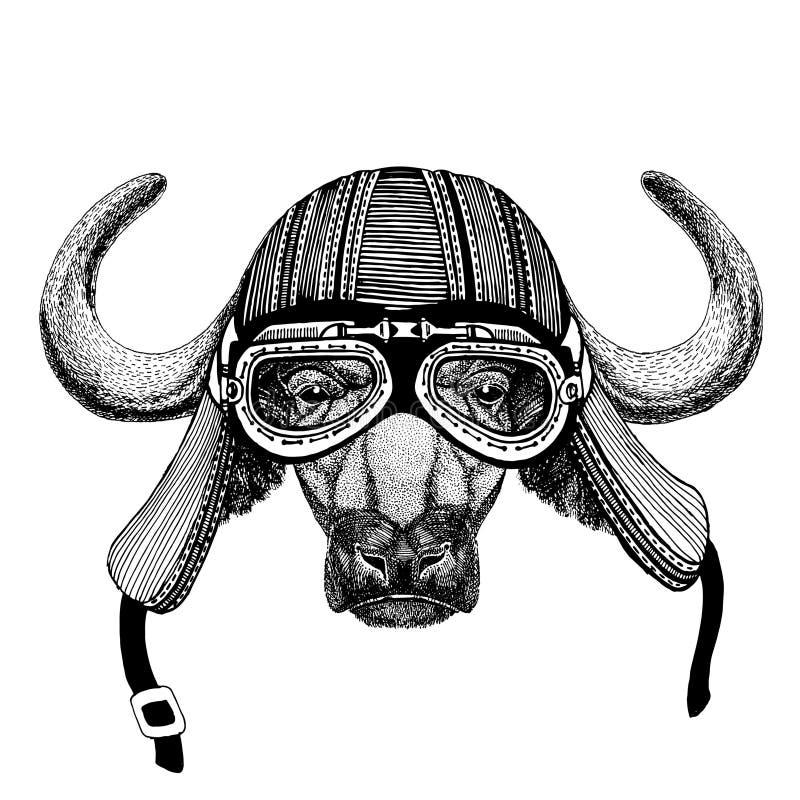 download 水牛城,公牛,黄牛手拉的图象t恤杉的,纹身花刺,象征,徽章
