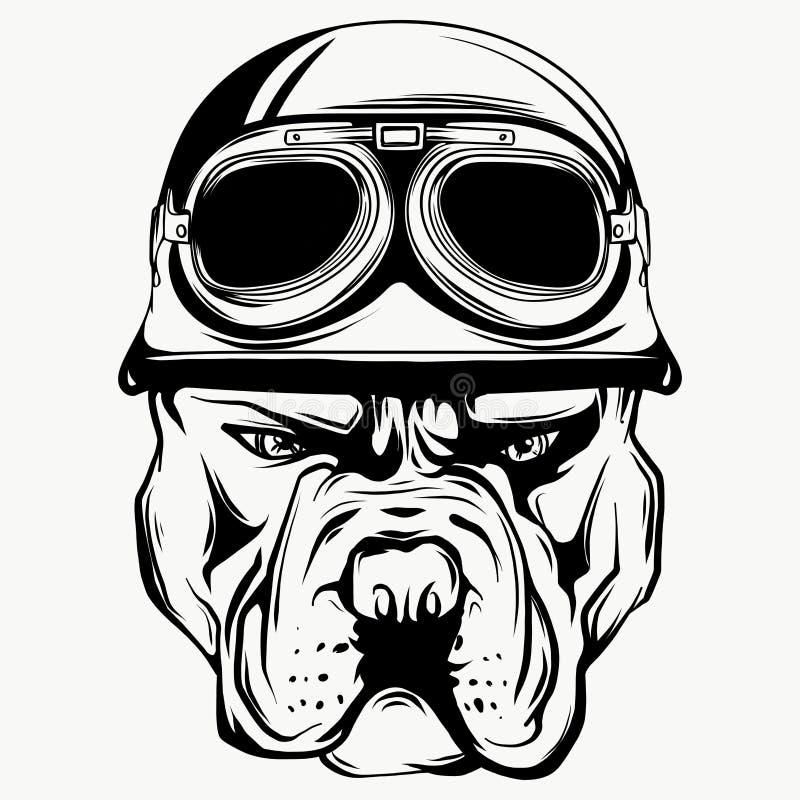 牛头犬骑自行车的人的传染媒介面孔有盔甲的 摩托车车手例证 衬衣图表 向量例证