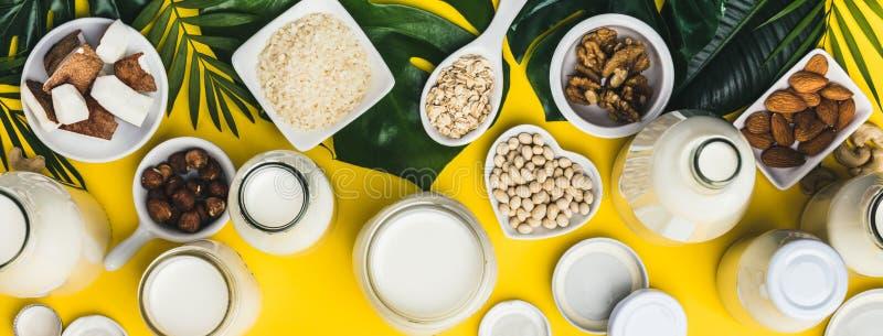 牛奶店自由牛奶替代品饮料和成份 免版税库存照片