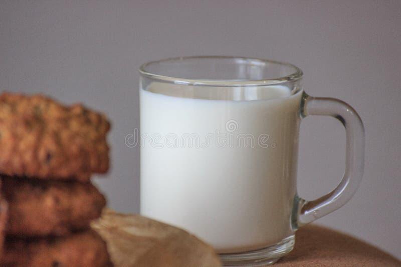牛奶盖帽用燕麦曲奇饼用葡萄干 是可能食物自创饼 在灰色背景 集中于盖帽 库存照片