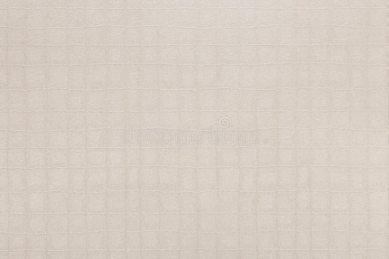 牛皮纸纹理、波状纸板纸板纹理背景事务的,教育和通信概念 免版税库存图片