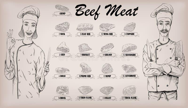 牛肉肉尸体裁减分开母牛剁信息图表计划标志 皇族释放例证