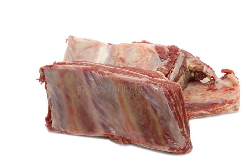 牛肉肉肋骨 免版税库存照片