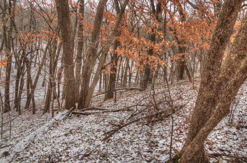 牛顿小山是南达科他美国州的一个国家公园在苏族瀑布附近 库存图片
