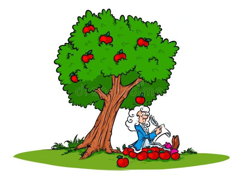 牛顿想法引力定律苹果树 向量例证