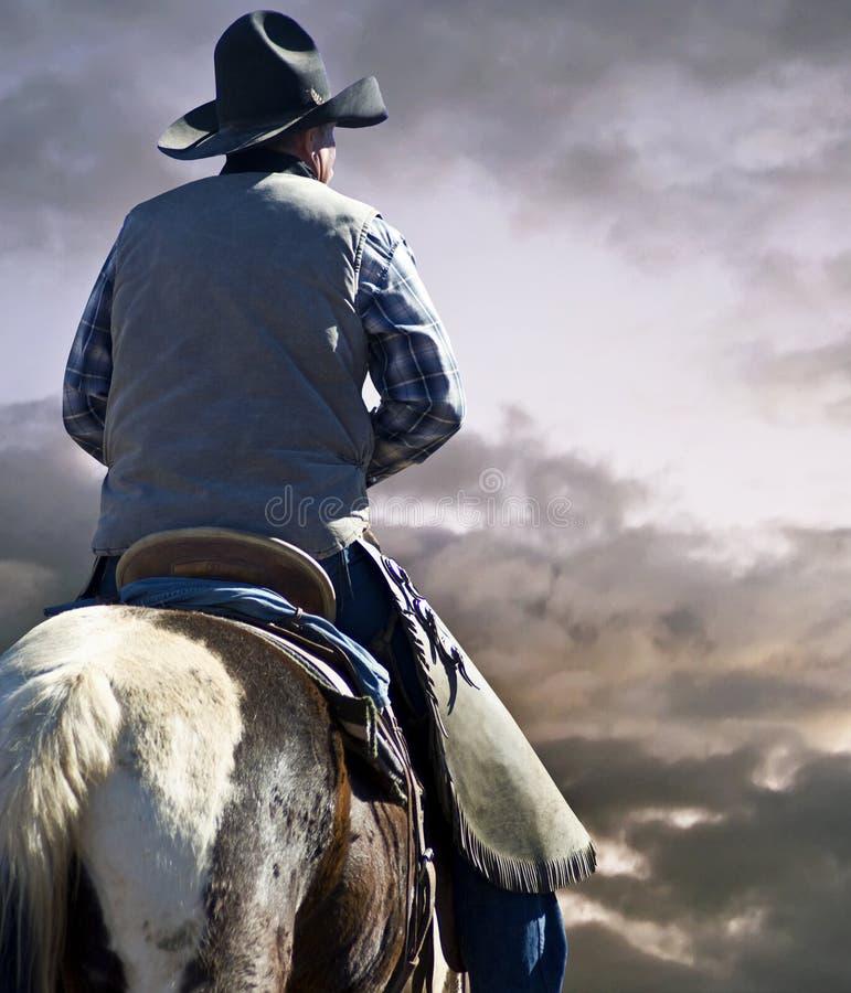 牛仔和马在大草原 免版税库存图片