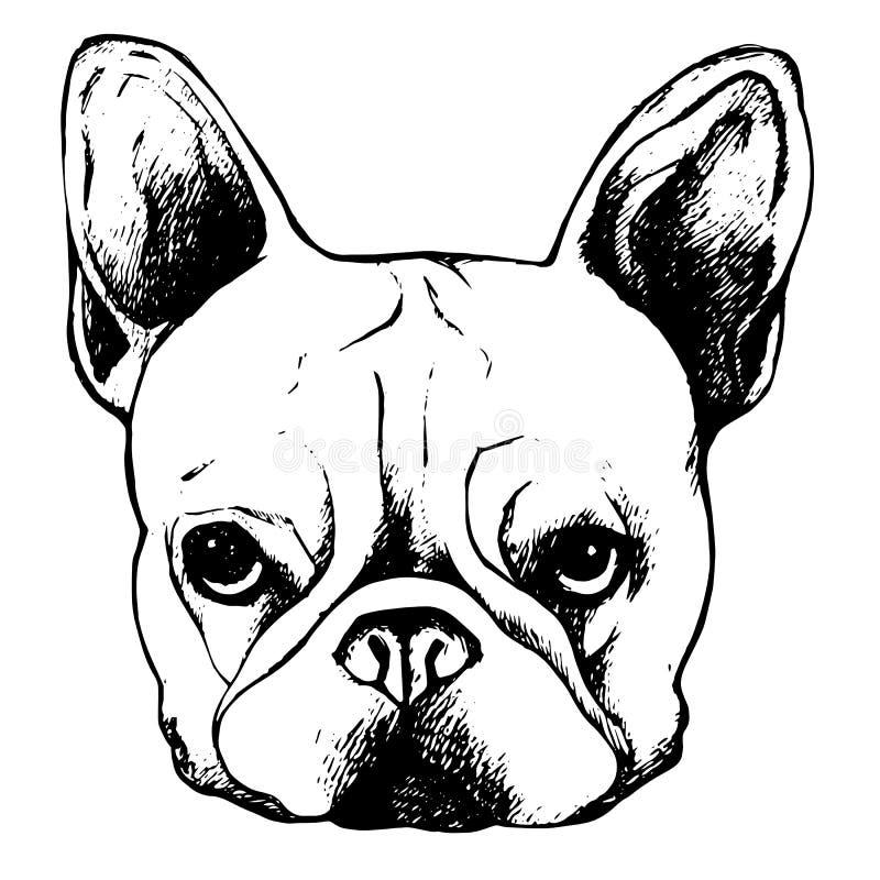 牛头犬狗动物法国传染媒介例证宠物品种逗人喜爱的图画小狗 向量例证