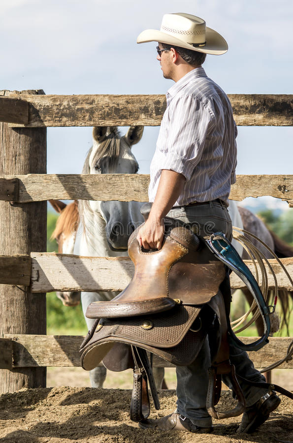 牛仔观看 免版税图库摄影