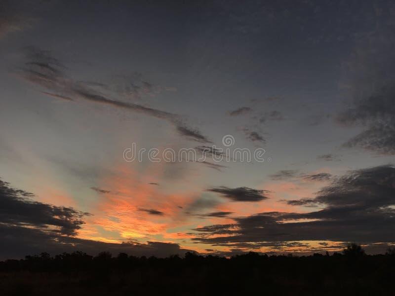 牛驻防,西北昆士兰 免版税库存图片