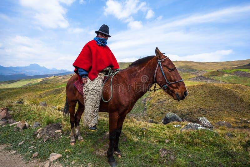 牛仔骑乘马 免版税库存图片