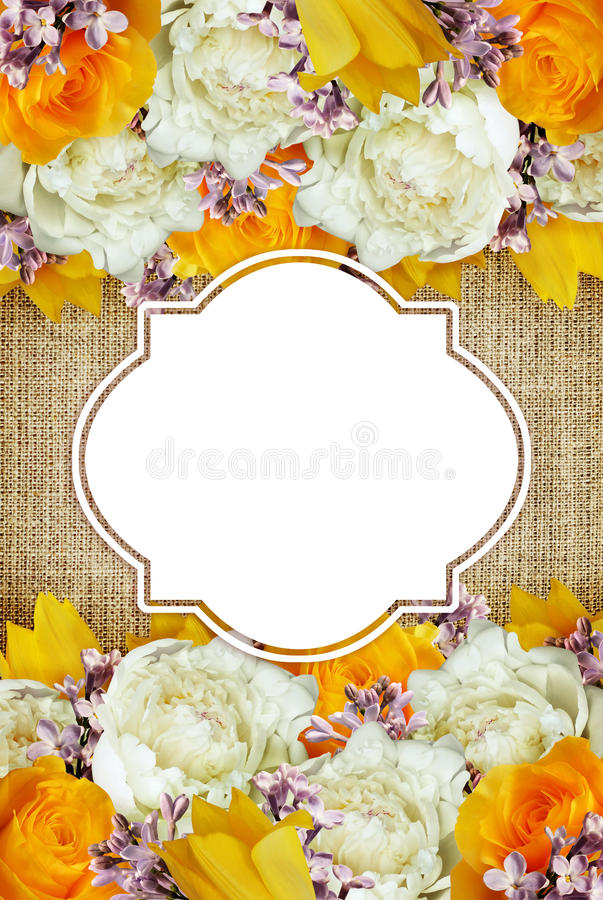 Download 牡丹、郁金香、玫瑰和丁香花背景 库存图片. 图片 包括有 线路, 花卉, 装饰, 查出, browne, 颜色 - 72362645