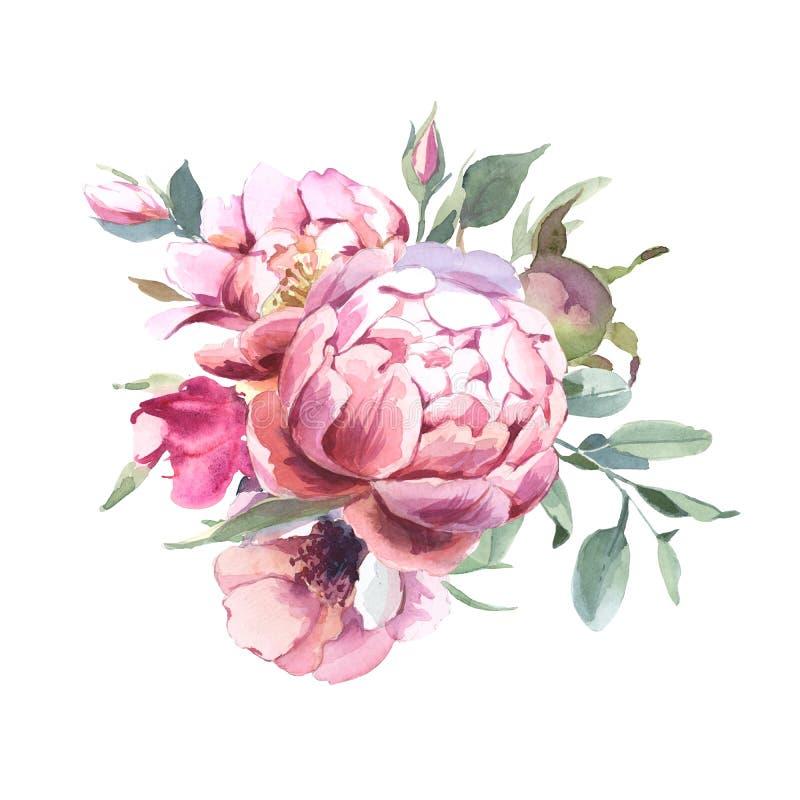 牡丹和blosom花水彩花束隔绝在婚姻,邀请、华伦泰卡片和印刷品的白色背景中 向量例证