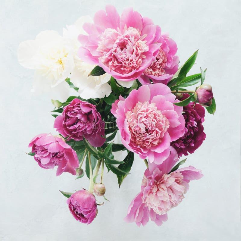 牡丹特写镜头视图花束  库存照片