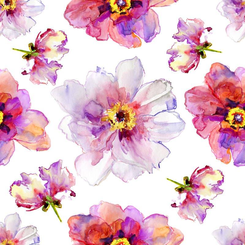 牡丹花。水彩例证。 免版税库存图片