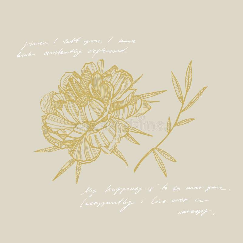 牡丹花和叶子画 手拉的被刻记的花卉集合 植物的例证 伟大为纹身花刺,邀请 向量例证