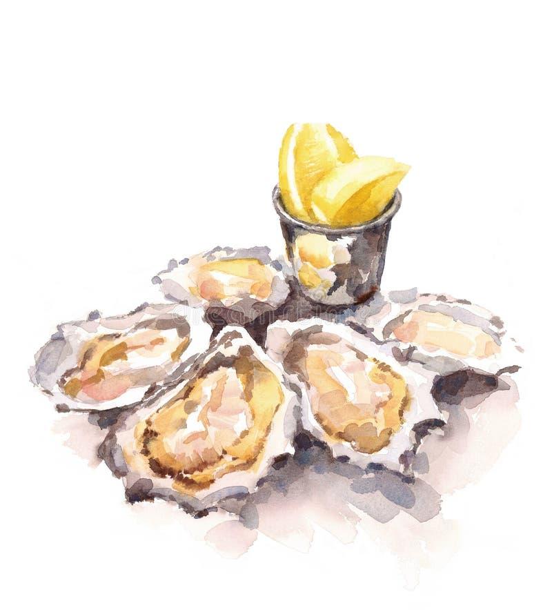 牡蛎柠檬水彩手画食物的例证 皇族释放例证