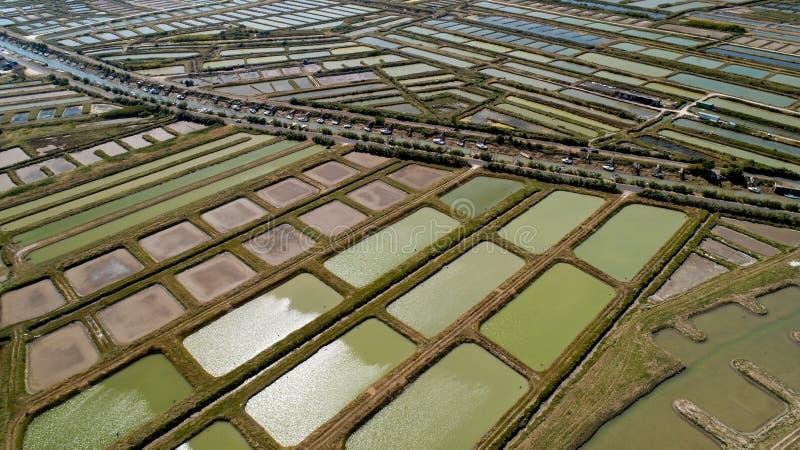 牡蛎鸟瞰图在Marennes,海的夏朗德省种田 库存照片