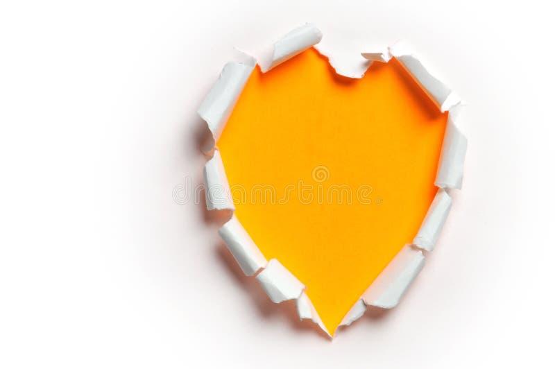 牡鹿纸张被剥去的s形状 免版税库存照片