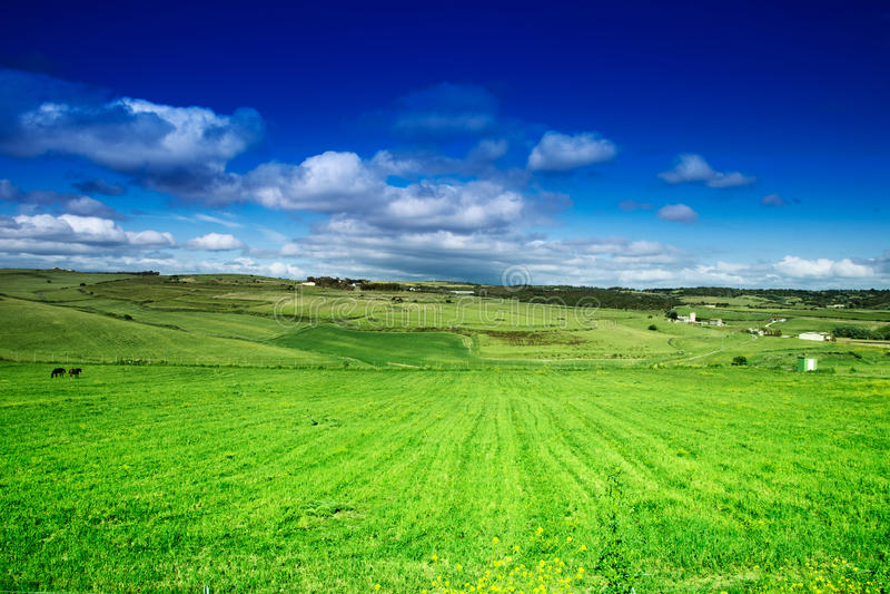 牧场_download 牧场地,天空和云彩 库存照片.