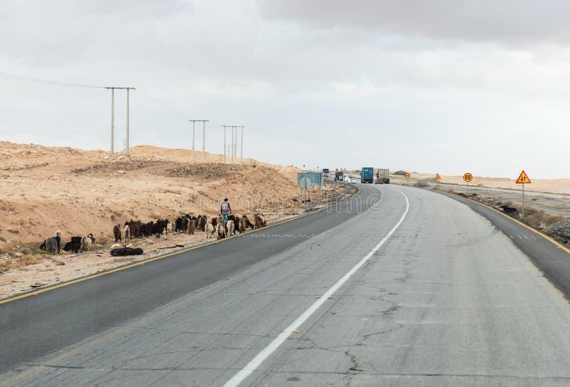 牧羊人在马鞍石市附近带领山羊小牧群沿边的城市间的路线在约旦 库存照片