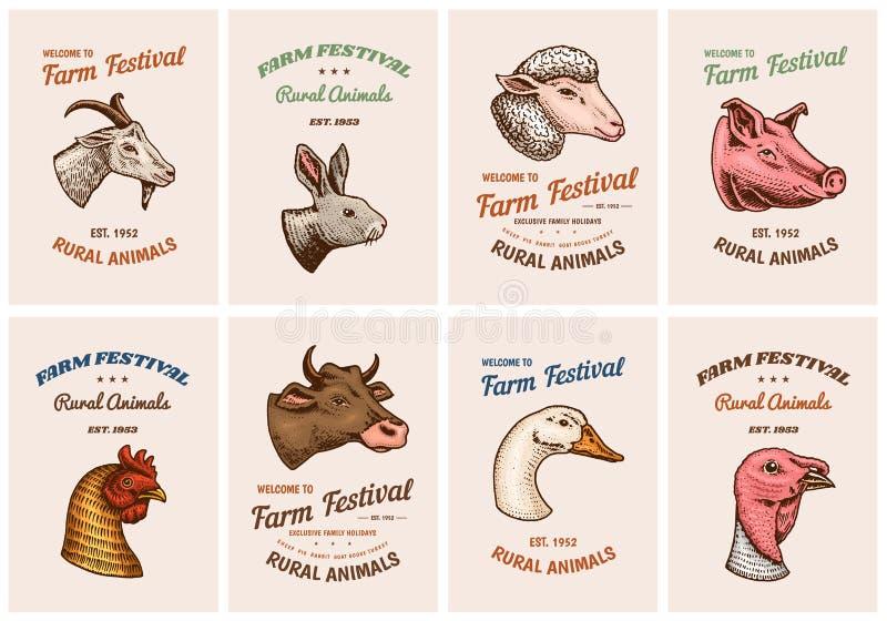牲口卡片 一只家养的猪山羊母牛兔子绵羊的头 葡萄酒模板商标或象征牌的 集合 皇族释放例证