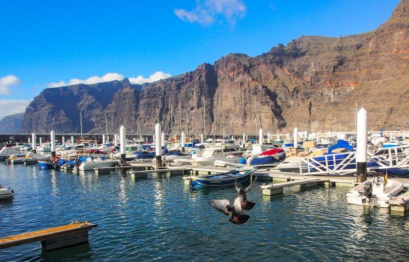 特内里费岛海岛的-黄雀色西班牙Los Gigantes港口 免版税库存照片