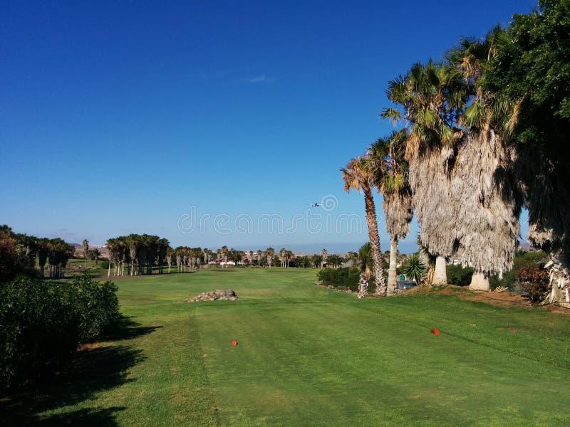特内里费岛高尔夫球 库存照片