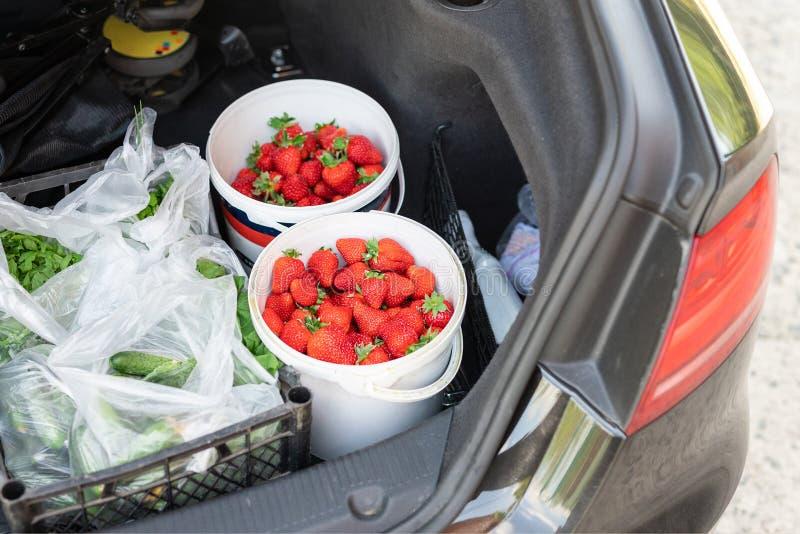 特写镜头与新鲜的成熟有机蔬菜和莓果的车厢在农夫市场上买了 红色水多的甜草莓, 免版税库存照片