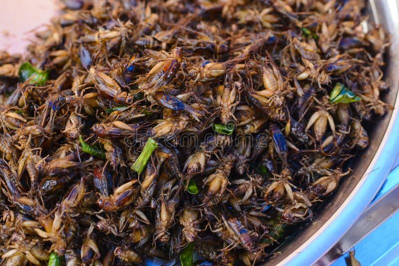 特写镜头在亚洲街道食物的油煎的蚂蚱 库存图片