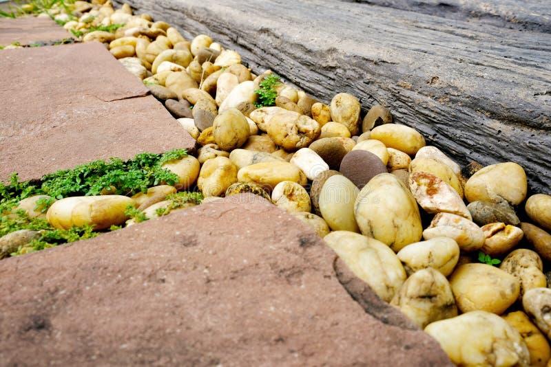特写镜头岩石道路在有石渣和一点绿色蕨的庭院里 免版税库存照片