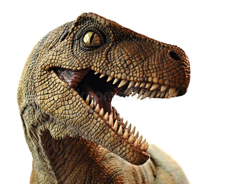 特写镜头恐龙 免版税库存照片