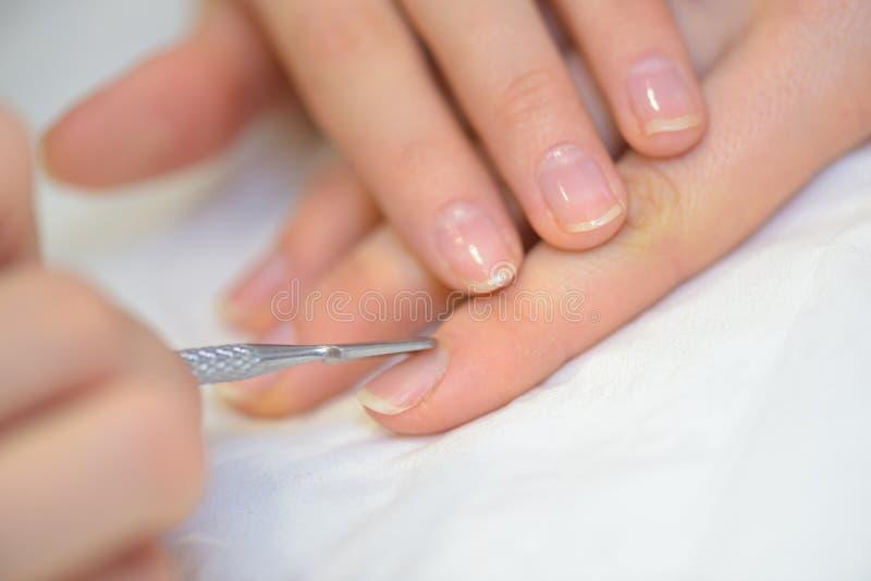 特写镜头手指由修指甲专家的钉子关心美容院的 免版税库存图片