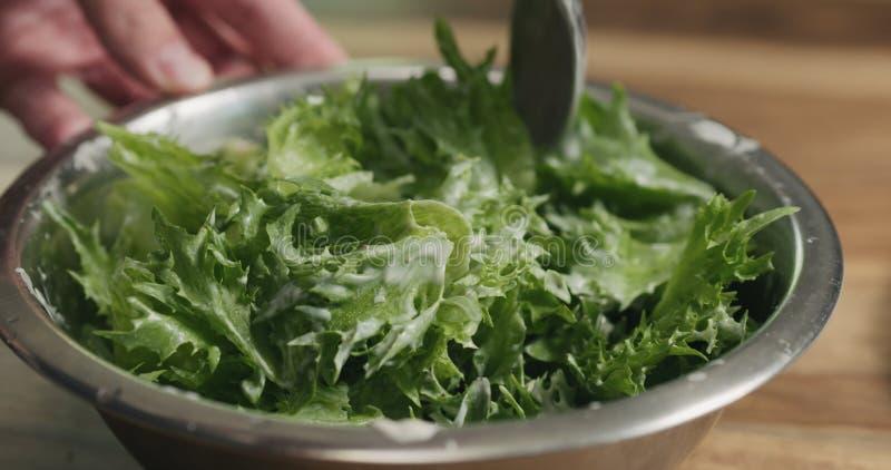 特写镜头混合的frillis沙拉离开与凯撒调味汁 库存图片