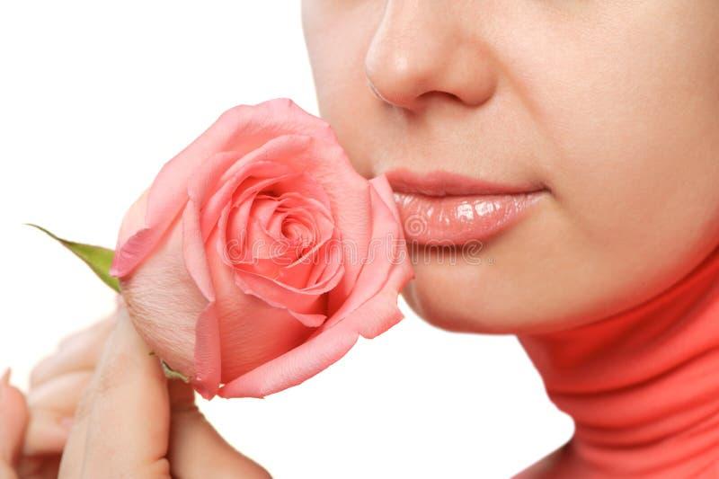 特写镜头玫瑰色妇女 库存照片