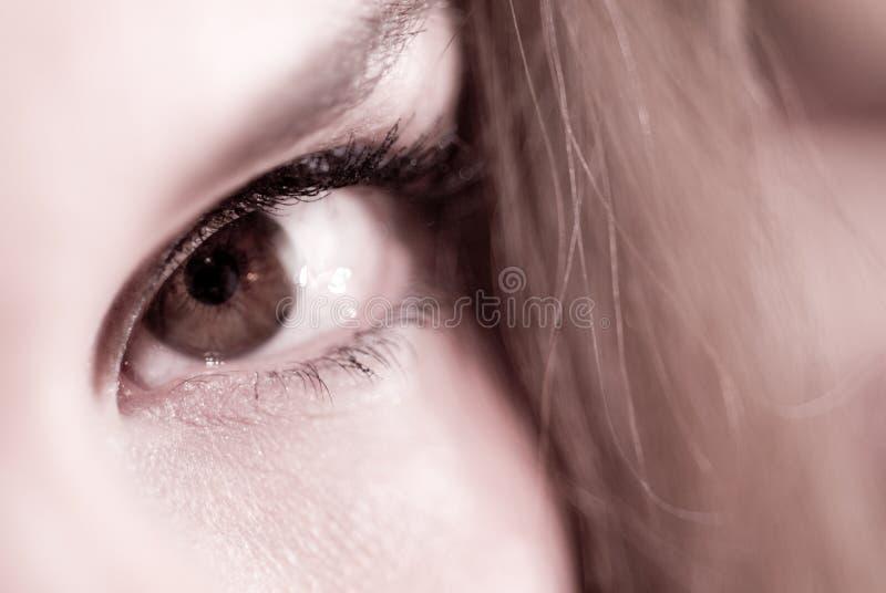 特写镜头眼睛女性 免版税库存照片
