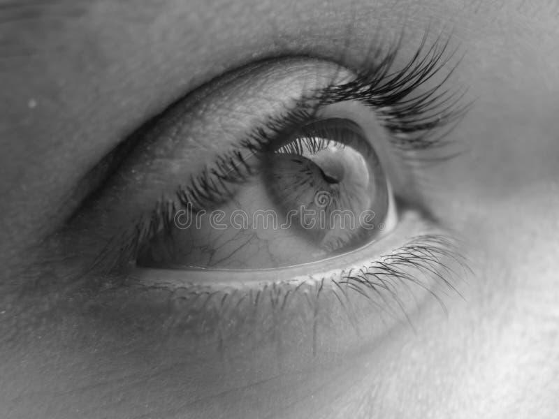 特写镜头眼睛照片 免版税库存图片