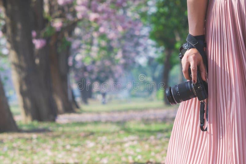 特写镜头被射击妇女手藏品照相机 准备在室外自然风景的年轻行家摄影师射击的照相机 库存图片