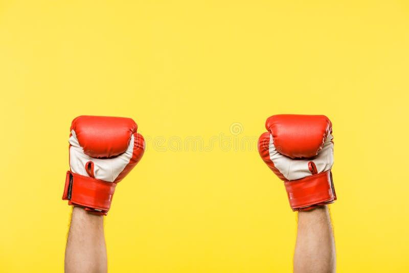 特写镜头部份观点的被隔绝的拳击手套的人 库存图片