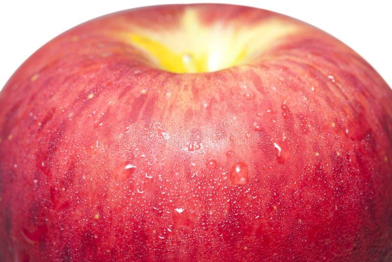 特写镜头一个水多的苹果II 免版税库存图片