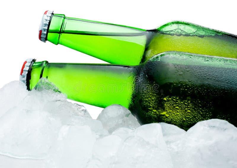 特写镜头两绿色瓶啤酒在冰冷却 免版税图库摄影