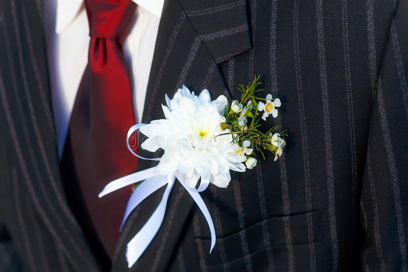 特写镜头黑人夹克新郎在他们的与一个红色领带和翻领扣眼的婚礼之日 免版税图库摄影