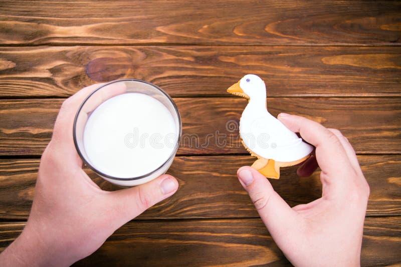 特写镜头人拿着杯牛奶和homemande gingerbrad鸭子被塑造的曲奇饼的手 免版税库存图片