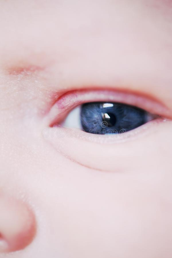 特写镜头婴孩眼睛 库存照片