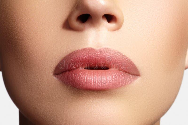 特写镜头完善的自然嘴唇构成 在女性面孔的美丽的肥满充分的嘴唇 清洗皮肤,新构成 温泉嫩嘴唇 免版税库存照片
