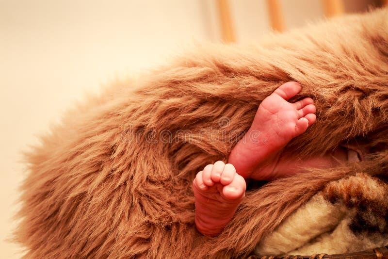 Download 特写镜头小新出生的婴孩脚 库存照片. 图片 包括有 beautifuler, 绵羊, 重婚, 童年, 婴孩 - 59107376