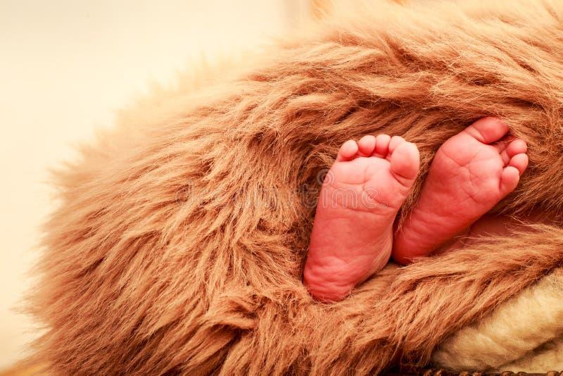 Download 特写镜头小新出生的婴孩脚 库存照片. 图片 包括有 子项, 孩子, 盖子, 少许, 删去的, 题头, 童年 - 59107382
